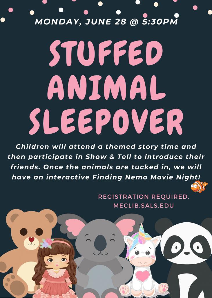 Stuffed Animal Sleepover @ Mechanicville District Public Library | Mechanicville | New York | United States