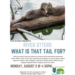 River Otters: What is That Tail For? With Five Rivers @ Mechanicville District Public Library | Mechanicville | New York | United States
